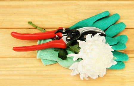 secateurs: Secateurs with flower on wooden background Stock Photo