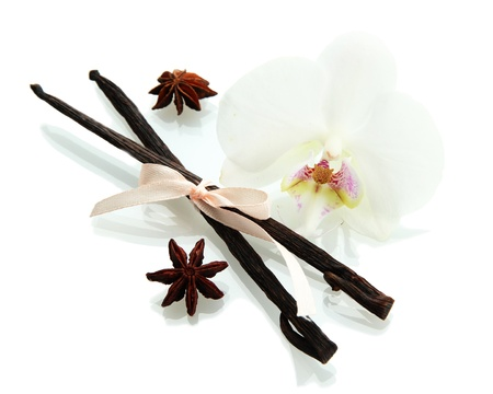 Vanilla pods and anise with flower isolated on white photo