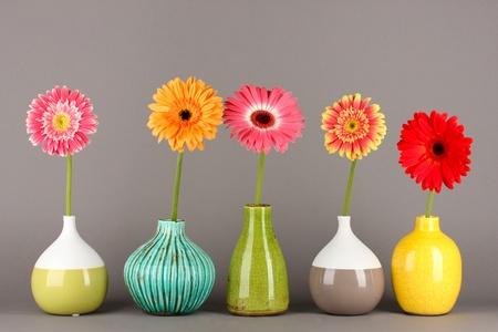 Beautiful Gerber flowers on grey background Stock Photo - 17866797