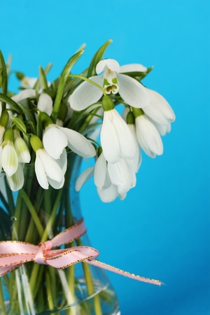 Bouquet of snowdrop flowers in glass vase, on color background photo
