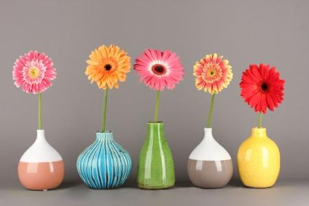 Beautiful Gerber flowers on grey background Stock Photo - 18143894