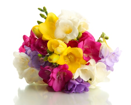 exotic flowers: Beautiful bouquet of freesias, isolated on white Stock Photo
