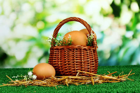 Eggs in basket on grass on natural background photo