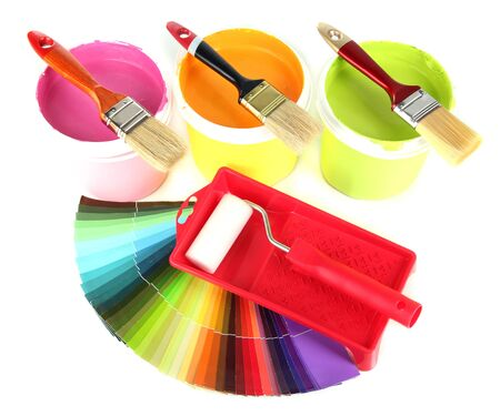 Set for painting: paint pots, brushes, paint-roller and palette of colors isolated on white Stock Photo - 18216453