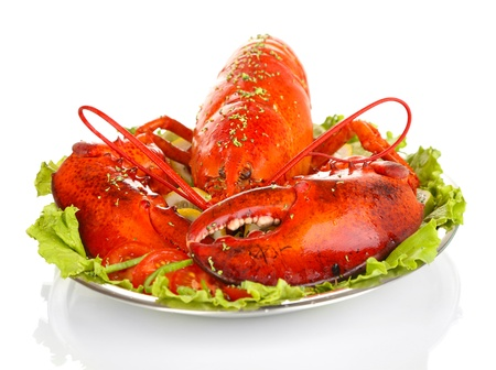 Red lobster on platter with vegetables isolated on white photo
