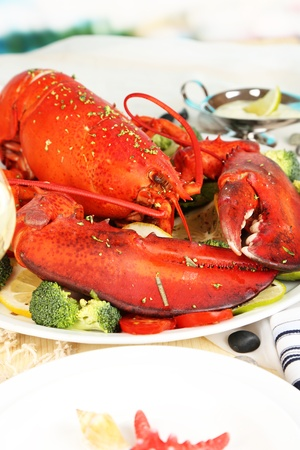 Red lobster on platter on serving table close-up photo