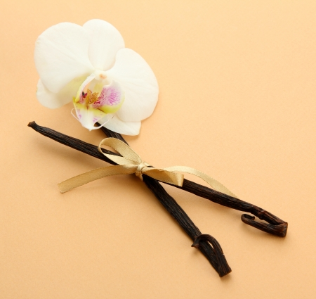 Vanilla pods with flower, on beige background photo