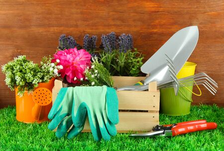 garden tool: Garden tools on grass in yard Stock Photo