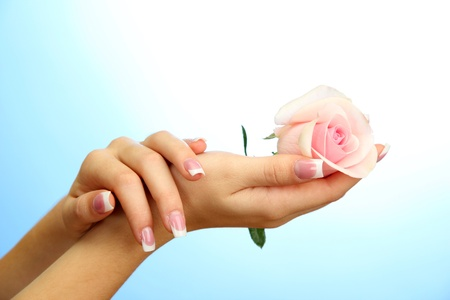 Beautiful woman hands with rose, on blue background photo