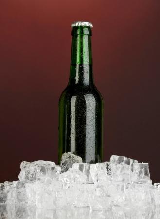 darck: Beer bottle in ice on darck red background