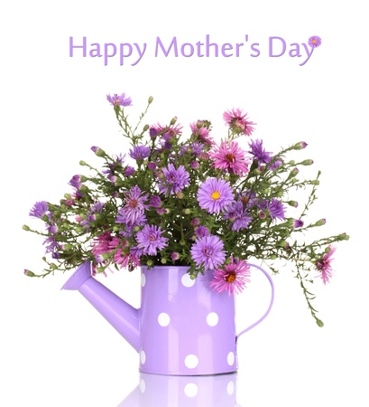 post card: beautiful bouquet of purple flowers in watering can isolated on white Stock Photo