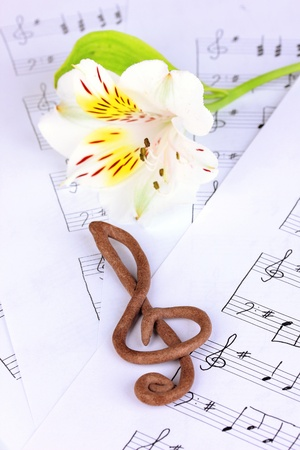 sheetmusic: Treble clef and flower on musical background