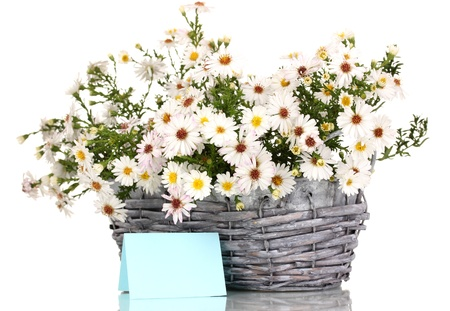 beautiful bouquet of white flowers in basket isolated on white photo
