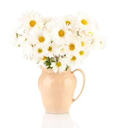 big daisy: daisies in vase isolated on white Stock Photo