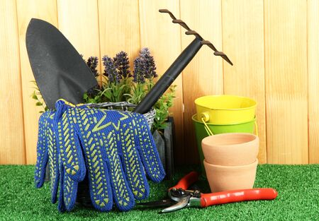 Garden tools on grass in yard photo