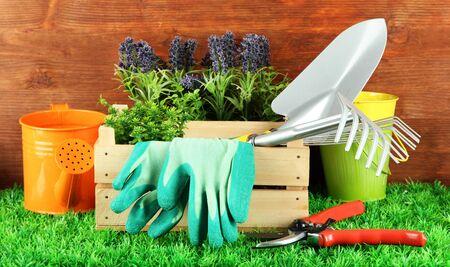 Garden tools on grass in yard Stock Photo