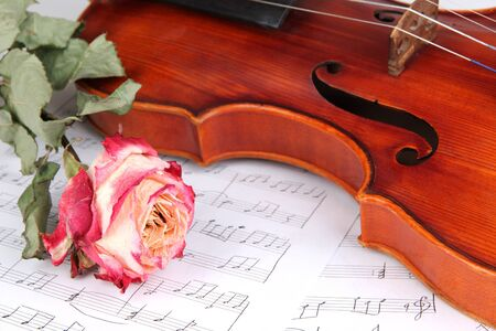 Classical violin on notes photo