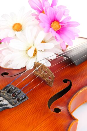 Classical violin with flowers close up Stock Photo - 19302861