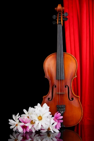 Classical violin on curtain background Stock Photo - 19300947