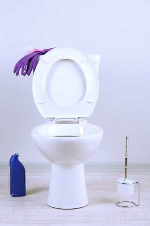 White toilet bowl and  cleaner bottle in a bathroom Stock Photo - 19772221