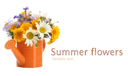 Beautiful bouquet of bright  wildflowers in watering can isolated on white photo