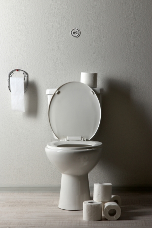 White toilet bowl and toilet paper in a bathroom Stock Photo - 19786392