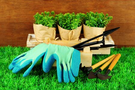 gardening tools: Garden tools on grass in yard Stock Photo