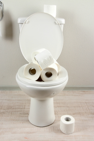 White toilet bowl with toilet paper in a bathroom photo