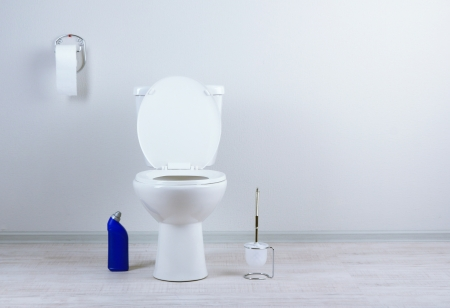 White toilet bowl and  cleaner bottle in a bathroom Stock Photo - 20040966