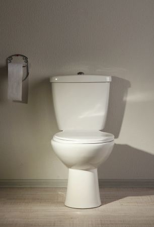 Toilet bowl in a bathroom Stock Photo - 20124112