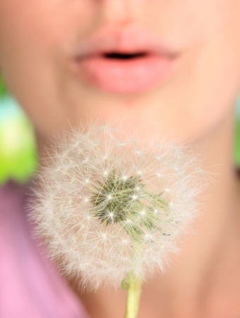 Girl blowing on dandelion close up photo