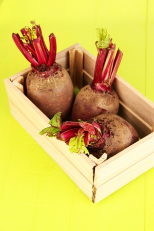 Young beets on wooden box on wooden table close-up photo