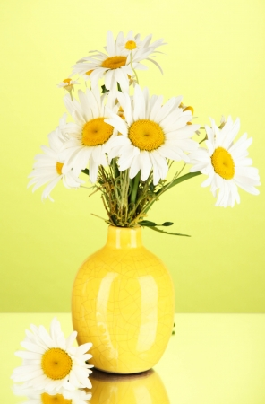 Beautiful bouquet chamomiles in vase on color background photo