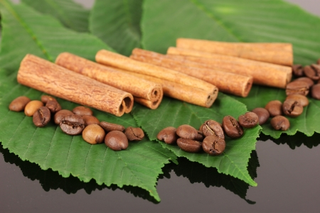 Coffee grains and cinnamon on sackcloth on green leafs close-up photo