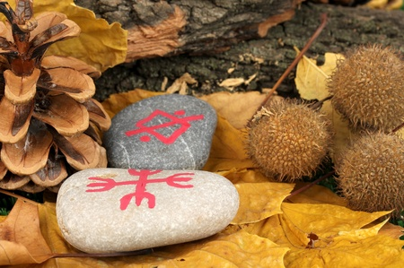 Fortune telling  with symbols on stones close up Stock Photo - 20653228