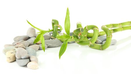 pacification: Still life with green bamboo plant and stones, isolated on white Stock Photo