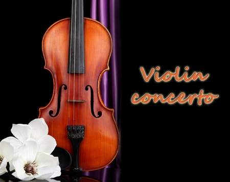Classical violin on black background photo