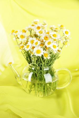 Many chamomile in glass teapot on green cloth background photo