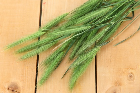 spikelets: Many spikelets on wooden background