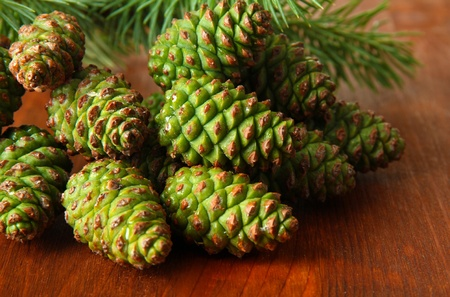 Green cones and fir tree on wooden background photo