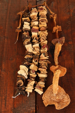 Dried mushrooms on wooden background photo