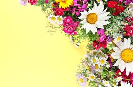 Beautiful bright flowers on yellow background photo