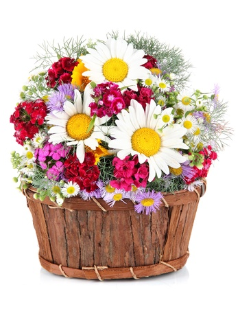 Beautiful bright flowers in wooden basket isolated on white photo