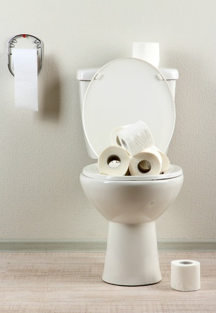 White toilet bowl with toilet paper in a bathroom Stock Photo - 20970464
