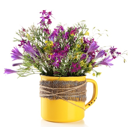 Beautiful bouquet of wildflowers in cup, isolated on white photo