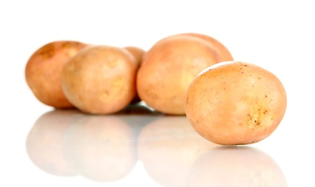 Potato isolated on white photo