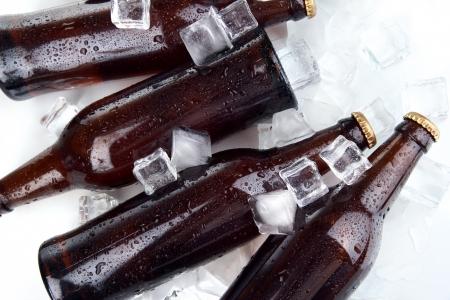 bottleneck: Beer bottles in ice cubes close up