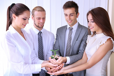 Business team holding together fresh green sprout