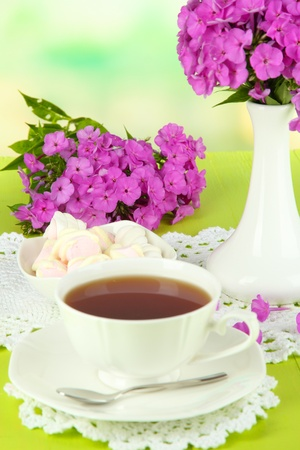 Beautiful bouquet of phlox with cup of tea on table on light background Stock Photo - 21093042