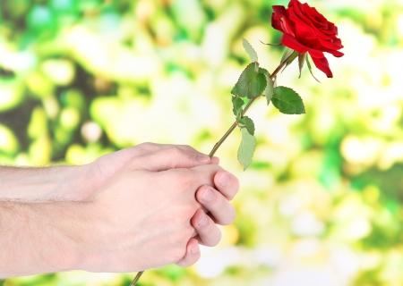 Afbeeldingsresultaat voor een roos geven